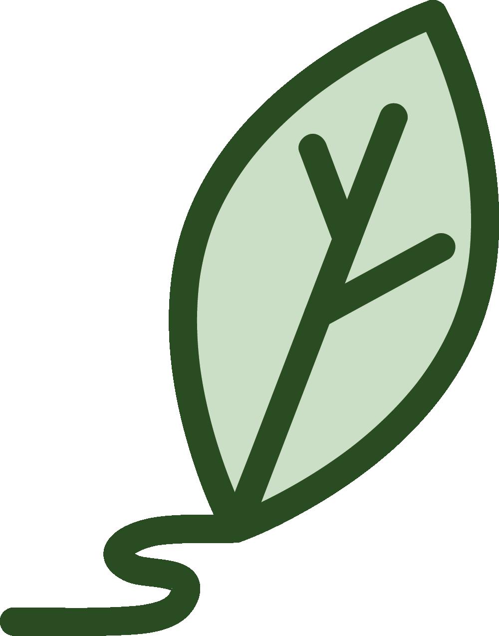 training piante